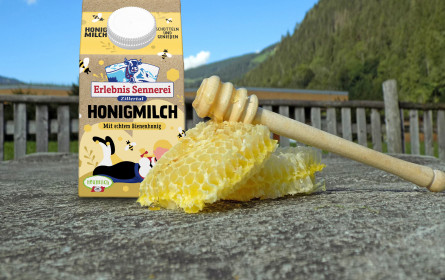 Honigmilch - Ein Allrounder für alle Fälle