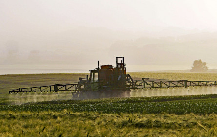 VKI-Test: Pestizidrückstände in Obst und Gemüse noch immer problematisch