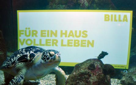 Billa übernimmt Patenschaft für Haus des Meeres