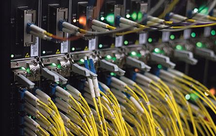Ein Virus bringt zufälligen Netztest