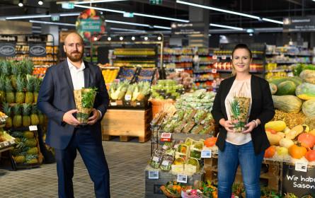 Merkur versorgt ab sofort Kunden in Parndorf mit einem vielfältigen Genusssortiment