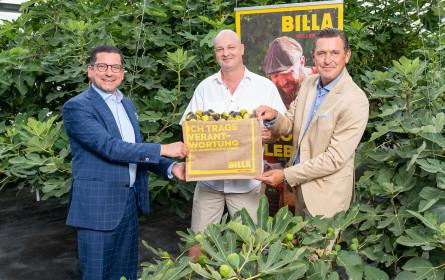 Lebensmittelvielfalt aus Wien: Billa und Stadt Wien fördern lokale Produzenten in der Bundeshauptstadt