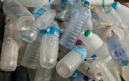 WWF Österreich fordert Pfandsystem