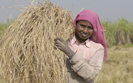 Auftakt für Fairtrade Reis-Kampagne am 15. Oktober 2020