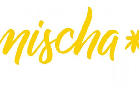 Mischa – Medien in Schule und Ausbildung