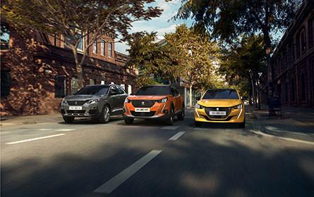 MVC Motors verkauft nun auch Peugeot