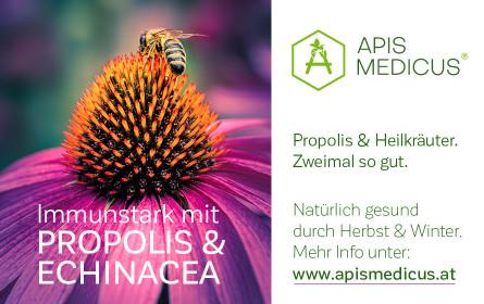 Apis Medicus – Entstehung und Hintergrund
