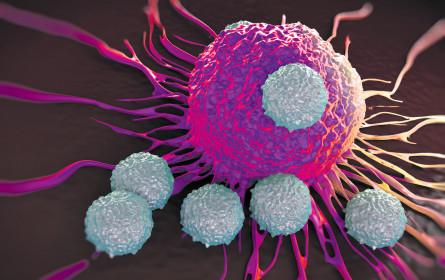 Krebstherapien werden besser – und teurer