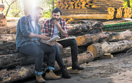 Holz hat Zukunft
