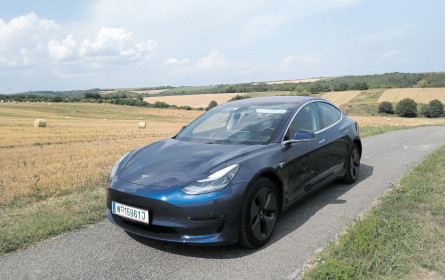 Model 3: Elons großer Wurf