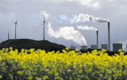 Wer Nachhaltiges will, muss es auch kaufen