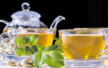 Krise abwarten und Tee trinken
