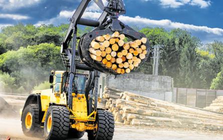 Holz bleibt positiv