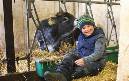 Regionale Wertschöpfung: Hofer Kalbsschnitzel zu 100% aus Tirol