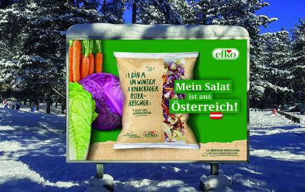 MMS begleitet efko bei Produkt-Launch des Wintersalats