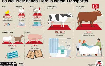 Österreich importierte und exportierte 2019 jeweils über 20 Millionen lebende Nutztiere