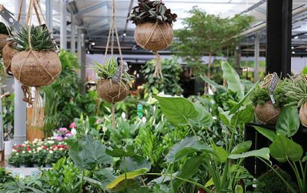 Ab heute mit bellaflora in die neue Gartensaison