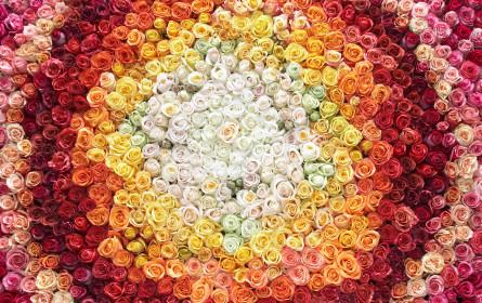 Muttertags-Blumen aus dem Supermarkt: Editel ermöglicht digitale Anbindung von Klimesch