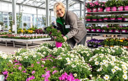 Mit den neuen Services ist bellaflora immer für seine Kunden da