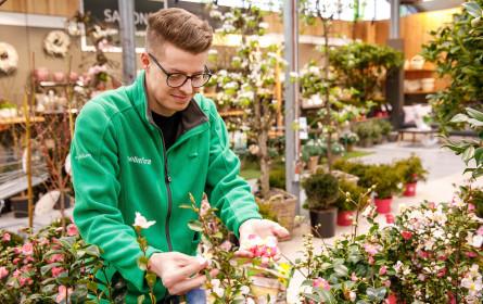Offene Filialen für alle: bellaflora bringt das Wohnzimmer nach draußen