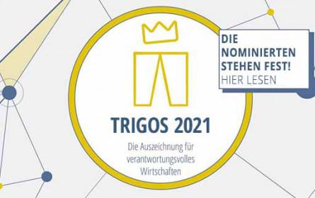 18 Unternehmen wurden für den Trigos 2021 nominiert