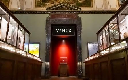 DMB. inszeniert die Venus für Zalando