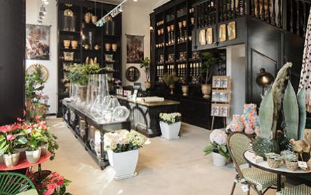 Lederleitner eröffnet Garten-Store in Linzer Innenstadt