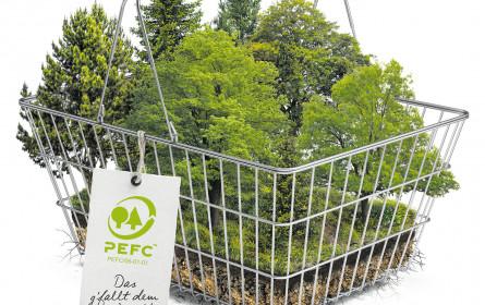 Richtig einkaufen schützt den Wald
