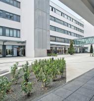 Colliers in Österreich weiter auf Erfolgskurs