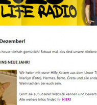 Life Radio setzt auf eyepin