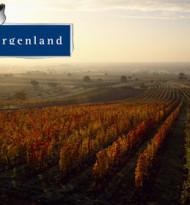 Gans Burgenland: Genuss mit viel Sonne drin