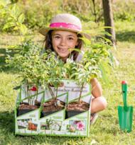 Heimische Pflanzenraritäten zurück in den Garten
