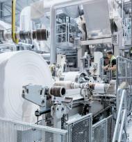 Papierindustrie an der Spitze der Bioökonomie
