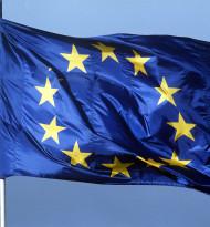 Ergebnisse der Online-Umfrage zur Neugestaltung Europas  stehen fest