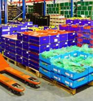Weltweit gehen 14 Prozent der Lebensmittel verloren