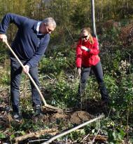 Küche&Co setzt ein Zeichen: Erste Bäume im Wienerwald gepflanzt