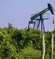 Wie die Rohstoffmanager auf die Konjunkturflaute reagieren
