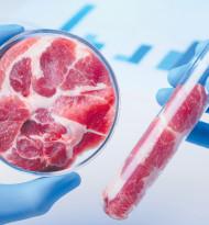 Fleisch, das neue tierbefreite Ding