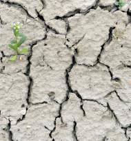 Klimaschützer