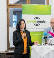 """""""Privatsender in Bedrängnis"""""""