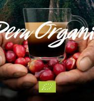Nespresso Professional präsentiert seinen ersten Bio-Kaffee