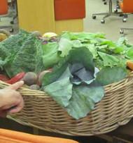 "EU-Strategie ""Farm to Fork"": Menschenrechte ins Ernährungssystem"
