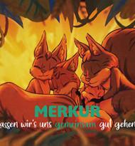 Eichhörnchen Elias sehnt sich nach Weihnachten