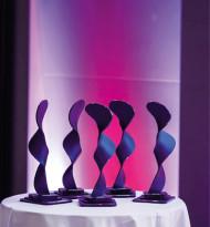 The ÖFV Award goes to …