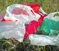 Plastiksackerl: Ab in den Müll