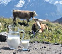 Der Milchmarkt, ein Rätselraten